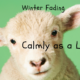 calmly as a lamb